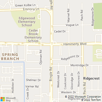 Map - Bingle Veterinary Clinic PC - 2025 Bingle Rd - Houston, TX, 77055